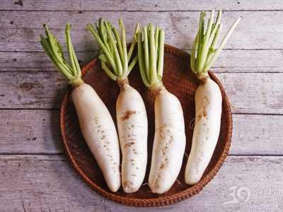 冬季为什幺要吃萝卜 冬季怎幺吃萝卜